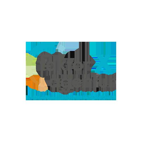 csm_faktor-x