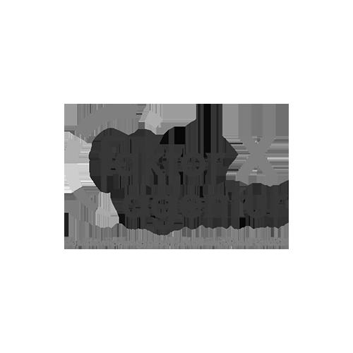 csm_faktor-x-grau